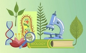 Образовательный кейс: Биология. Раздел Анатомия и физиология человека