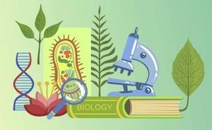 Образовательный кейс: Биология. Раздел Зоология.