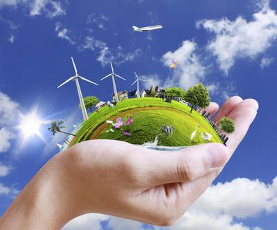 Образовательный кейс: Экология