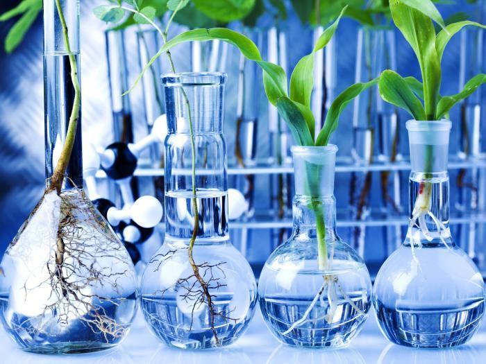 Естественно-научное (химия, биология, география, физика, астрономия)